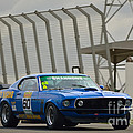 Tilley Racing Mustang by Stuart Row