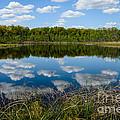 Timberland Lake by Patrick Shupert
