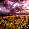 Time And Again by Phil Koch