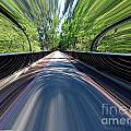 Time Bridge by Skip Willits