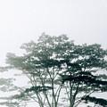 Timor-leste by Bendik Johan St??lsett