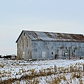 Tin Barn Color  by Bonfire Photography