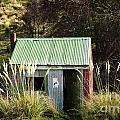 Tin Hut by Tim Hester