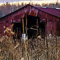 Tin Roof Rusted by Bill Cannon