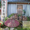Tin Shed Apalachicola Florida by Audrey Peaty
