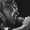 Tina Turner 1 by Dragan Kudjerski
