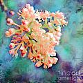 Tiny Spring Tree Blooms - Digital Color Change And Paint by Debbie Portwood