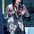 Tiny Tim by Concert Photos
