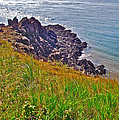 Tip Of Cape D'or-ns by Ruth Hager