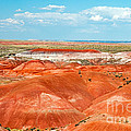 Tiponi Point Painted Desert Petrified Forest National Park by Fred Stearns