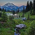 Tipsoo Meadows by Mike Reid