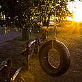 Tire Swing by Angus Hooper Iii