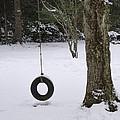 Tire Swing In Winter by Bill Cannon