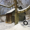 Tire Swing Shed by Timothy Flanigan