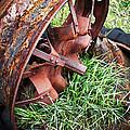 Ferrous Wheel by Guy Shultz