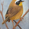Tit Bird by Barbara Haviland