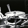 Tito Puente-1 by Gary Gingrich Galleries
