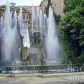 Tivoli Garden Fountain by Bob Phillips
