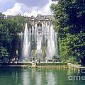 Tivoli Garden Fountain Reflection by Bob Phillips