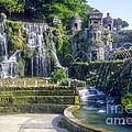 Tivoli Garden Fountains by Bob Phillips
