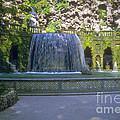 Tivoli Gardens Fountain And Pool by Bob Phillips