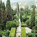 Tivoli Italy Park by Ted Pollard