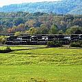 Tn Train by Regina McLeroy