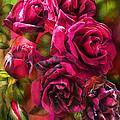 To Be Loved - Red Rose by Carol Cavalaris