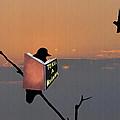 To Kill A Mockingbird by Bill Cannon