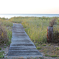 To The Beach by Christy Gendalia