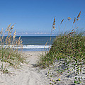 To The Beach by Kay Pickens