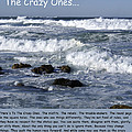 To The Crazy Ones Quote By Stove Jobs by Barbara Snyder