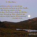 To The Full Moon by Barbara Griffin