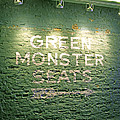 To The Green Monster Seats by Barbara McDevitt