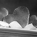Toast Hearts With Butter Black And White by Iris Richardson