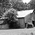 barn in Kentucky no 10 by Dwight Cook