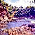 Tobago  by Serge Seymour