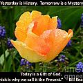 Today Is A Gift Of God by Gallery Of Hope