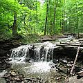 Toenissen Falls by Joseph Rennie