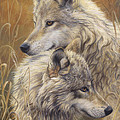 Together by Lucie Bilodeau