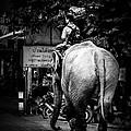 Together..on..street... by Rak Sararak