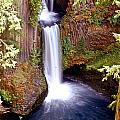 Tokatee Falls 1 by Marty Koch