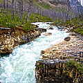 Tokuum Creek Flowing Into Marble Canyon In Kootenay Np-bc by Ruth Hager