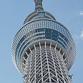 Tokyo Skytree by Jill Mitchell