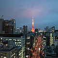 Tokyo Tower At Twilight by Guy Whiteley