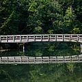 Tolmie Bridge by Tikvah's Hope