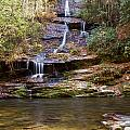 Tom Branch Falls by Terry Cotton