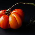 Tomato by Daniel Furon