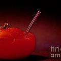 Tomato Juice by Sharon Elliott