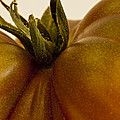 Tomato Macro by Sandra Foster